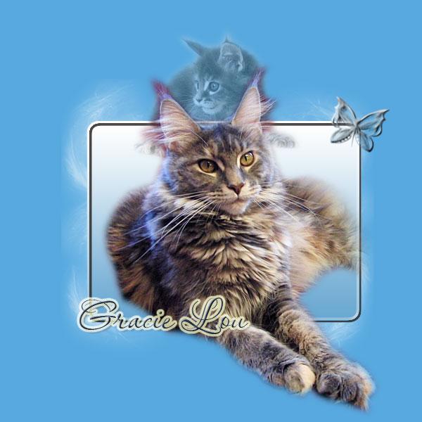 Gracie Lou