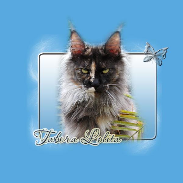 Tabora Lolita